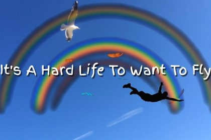 Permalink to: It's A Hard Life To Want To Fly